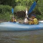 Kayaking the wild Kickapoo River