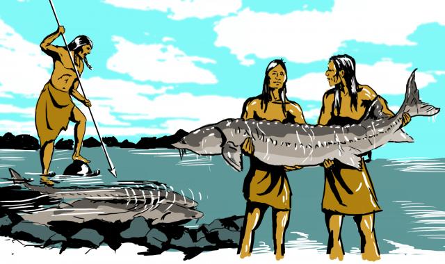 NAfishing