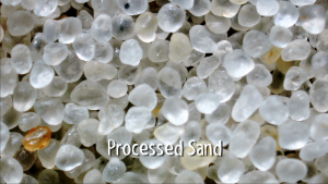 processed grains