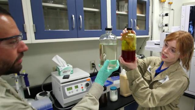 Waste Oils Into Biodiesel