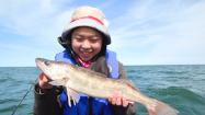 Finding Your Walleye Adventure