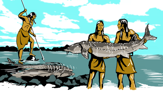 Native American Relationship with Sturgeon