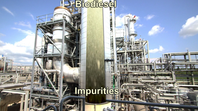 Biodiesel Reactions In Action
