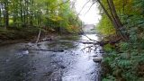 River Reborn