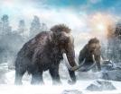Hunting Megafauna with Clovis Kids